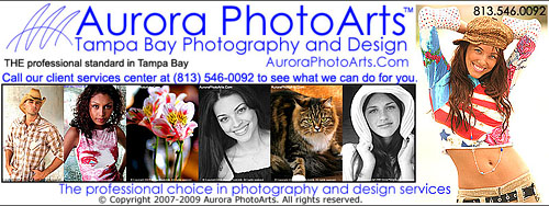 Header for an online Aurora PhotoArts ad, 2010. The old logo can be seen on the upper left.